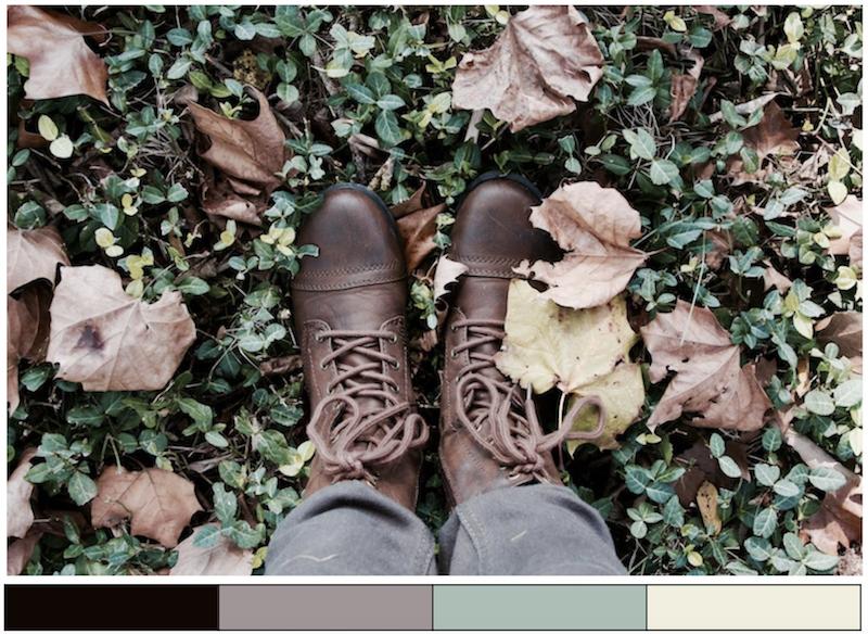 autumn color scheme inspiration