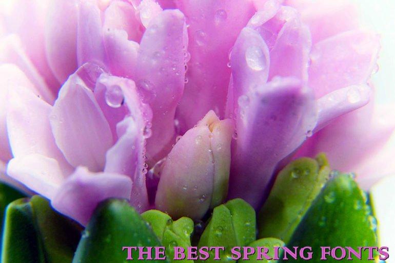 Best Spring Fonts
